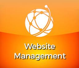 Professional Website Management