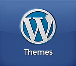 WordPress Appearance Themes Tutoring